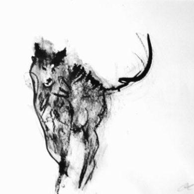Hund I | 2013 | Tusche | 30 x 40 cm
